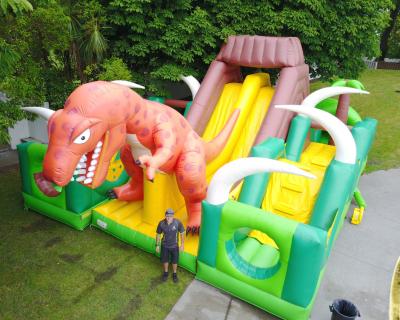 Dino Castle